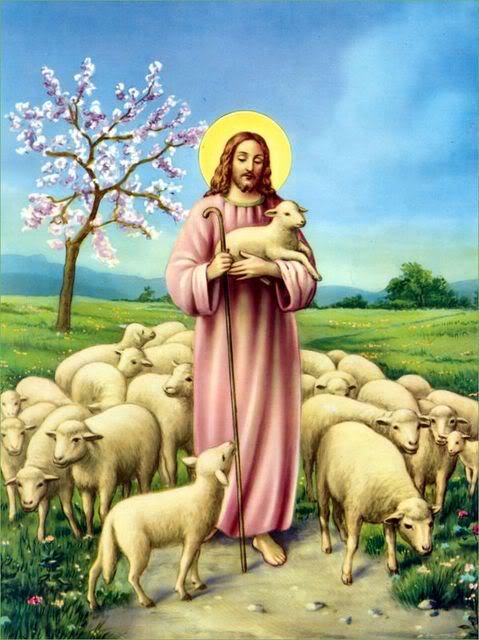 Suy niệm CN 4 PS B. CN CHÚA CHIÊN LÀNH, cầu cho ơn thiên triệu Linh mục và tu sĩ